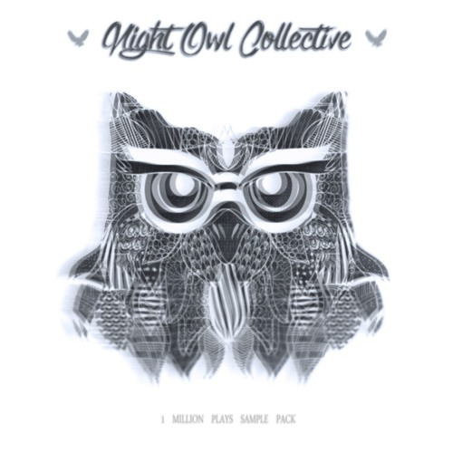 Sample Packs – Night Owl Collective